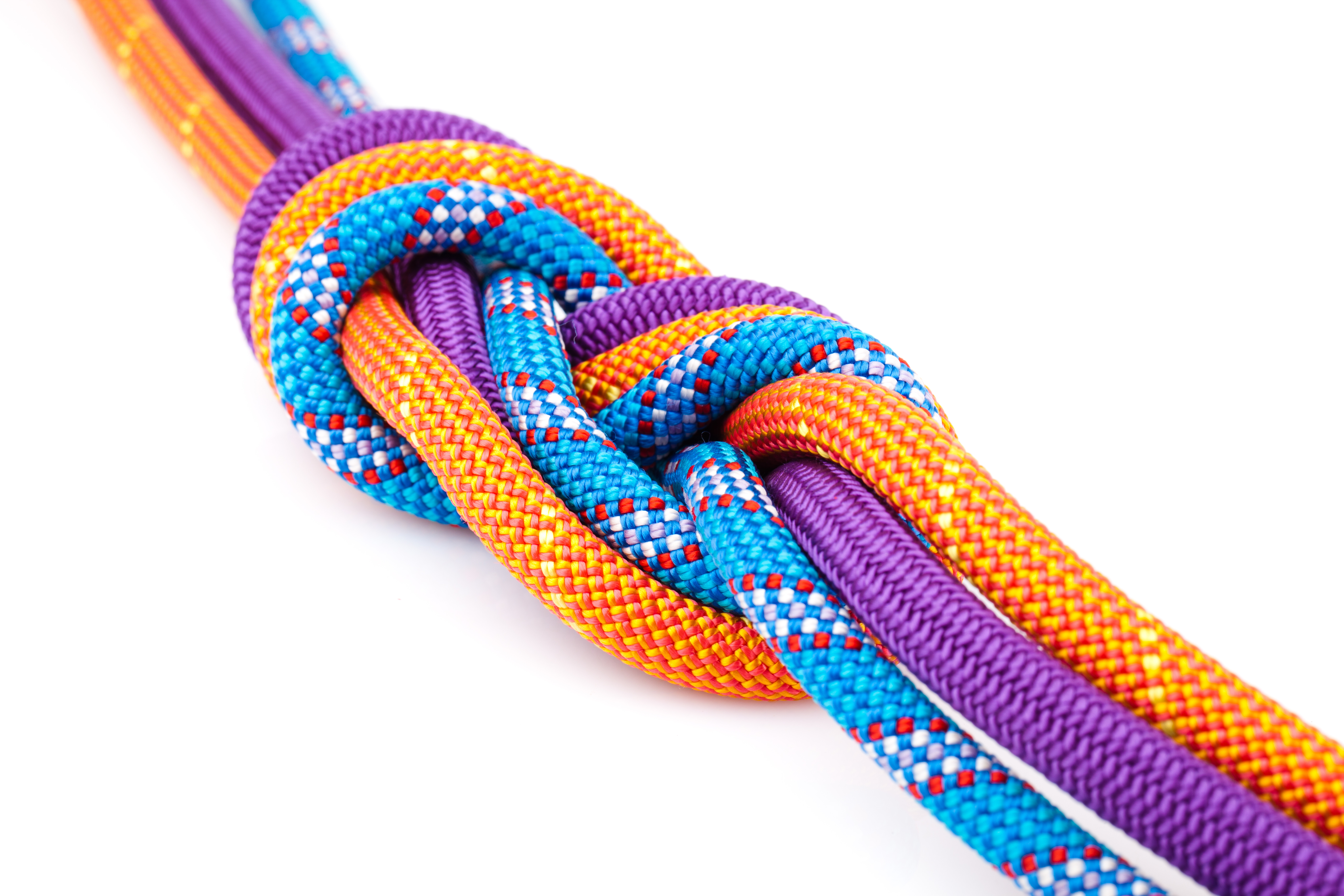 eight  rope knot
